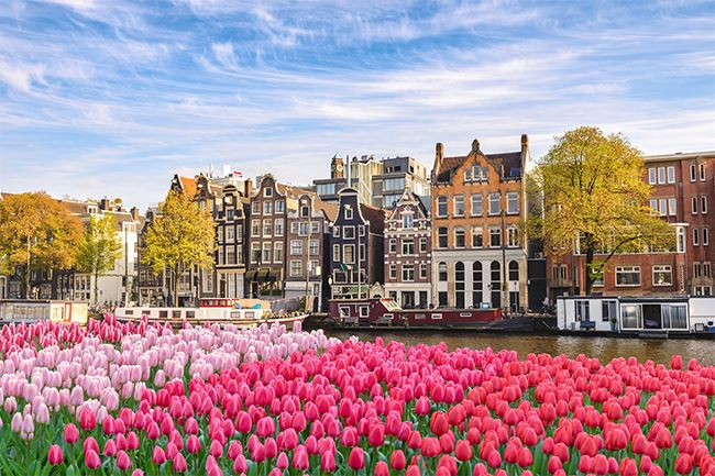 Visit Amsterdam during your Motability Holidays